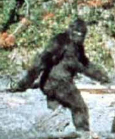 patterson_bigfoot.jpg